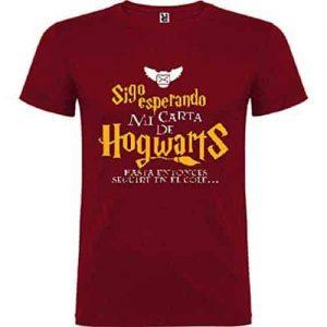 iClosam Camiseta Manga Larga Hombros Descubiertos Harry Potter Suelto Algod/ón Sweatshirt Moda y Comodo para Mujer